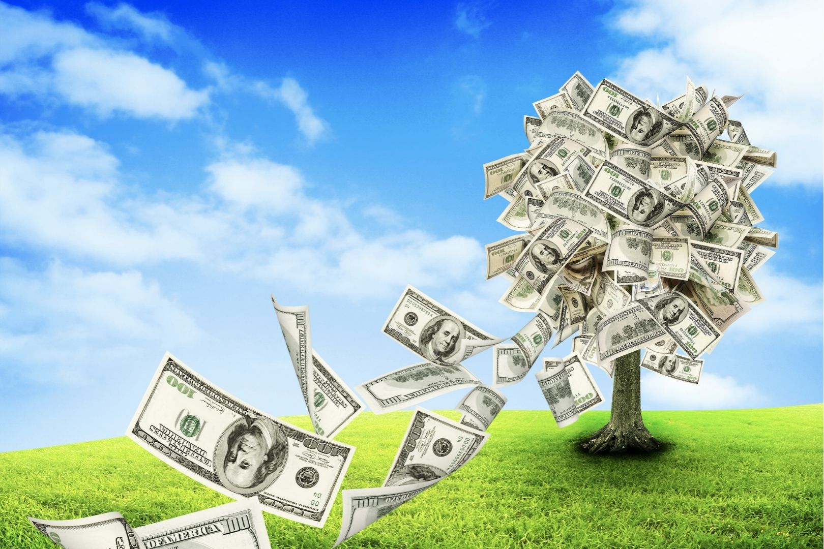 Dems Think Taxpayer 💵 Grows On Trees 🌳