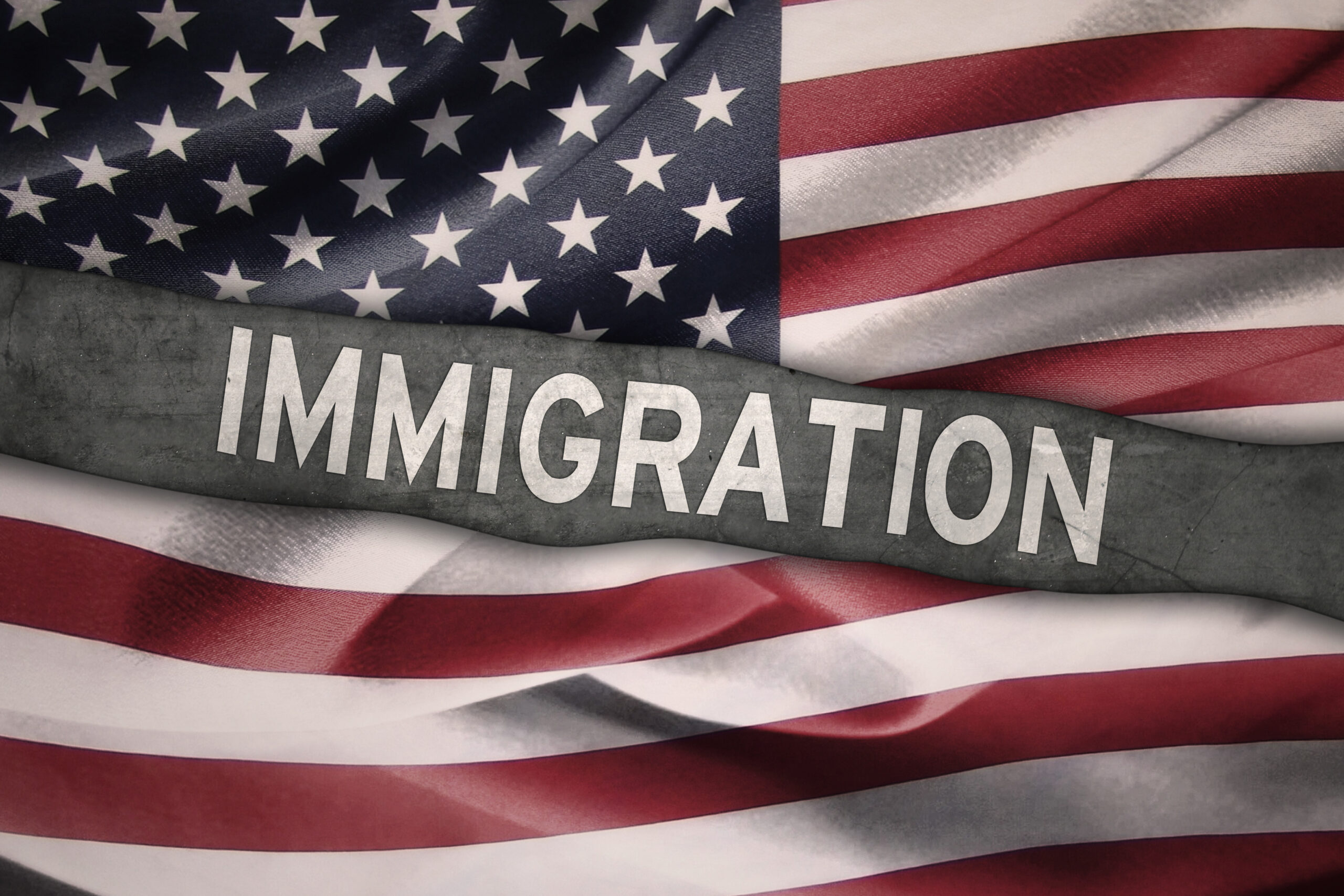 (Another) Illegal Immigration Blunder 👎